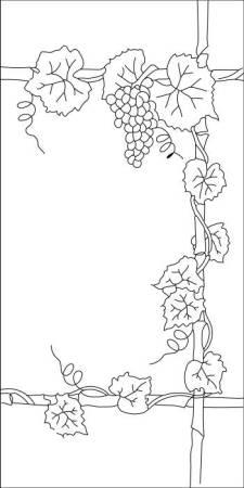 Ceiling Light Lens Art Grape Vine And Door Grapes Images