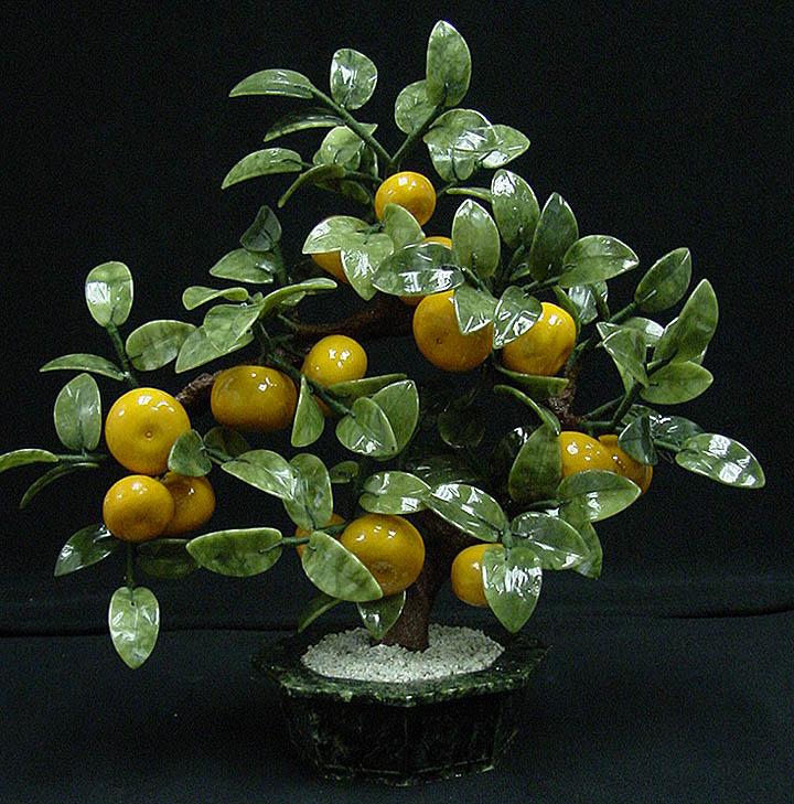 jade tangerine tree