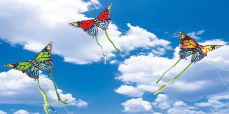 sky ceiling cloud light lens Item # Butterflys Sky ... Price $39.95 + S/H