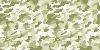 sky ceiling cloud light lens Item # Camouflage Light Lens ... Price $39.95 + S/H