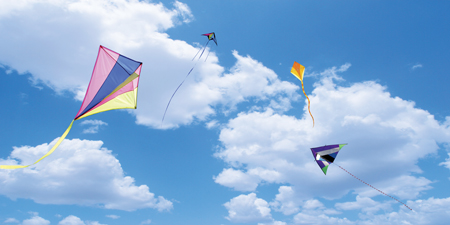 sky ceiling cloud light lens Item # Kite Sky Diffuser ... Price $44.97 + S/H