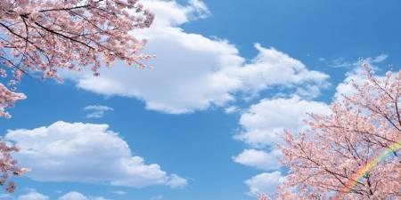 sky ceiling cloud light lens Item # Springtime Bliss ... Price $39.95 + S/H