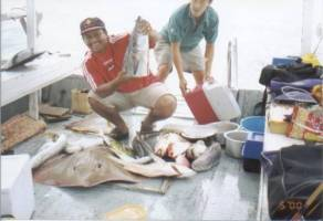 fish are abundent